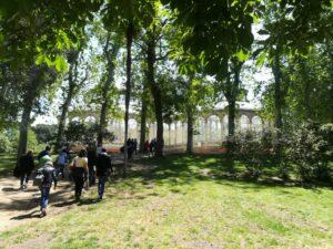 Los árboles exóticos del Retiro @ CIEA El Huerto del Retiro