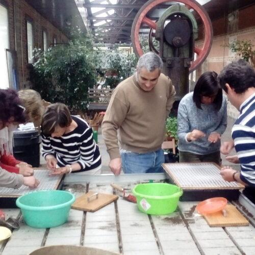 Taller de semilleros y plantel ecológico