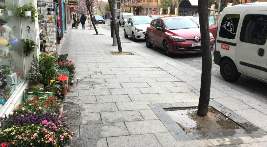 Plano general de la calle López de Hoyos con sus alcorques
