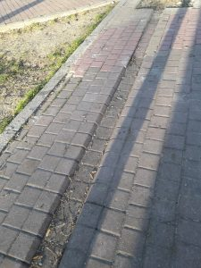 Reparación de paseos en la plaza de la Constitución