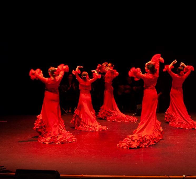 Grupo Flamenco Villa Rosa