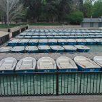 Un centenar de barcas hay en el embarcadero