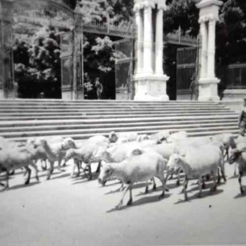 Puerta de España. Parque del Retiro