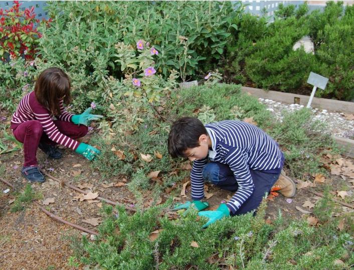 """Alumnos del CEIP P.O. Eijo Garay, realizando labores de limpieza de la """"Patrulla Verde"""""""