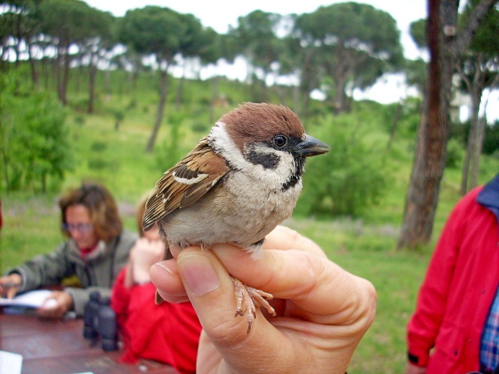 Taller biodiversidad