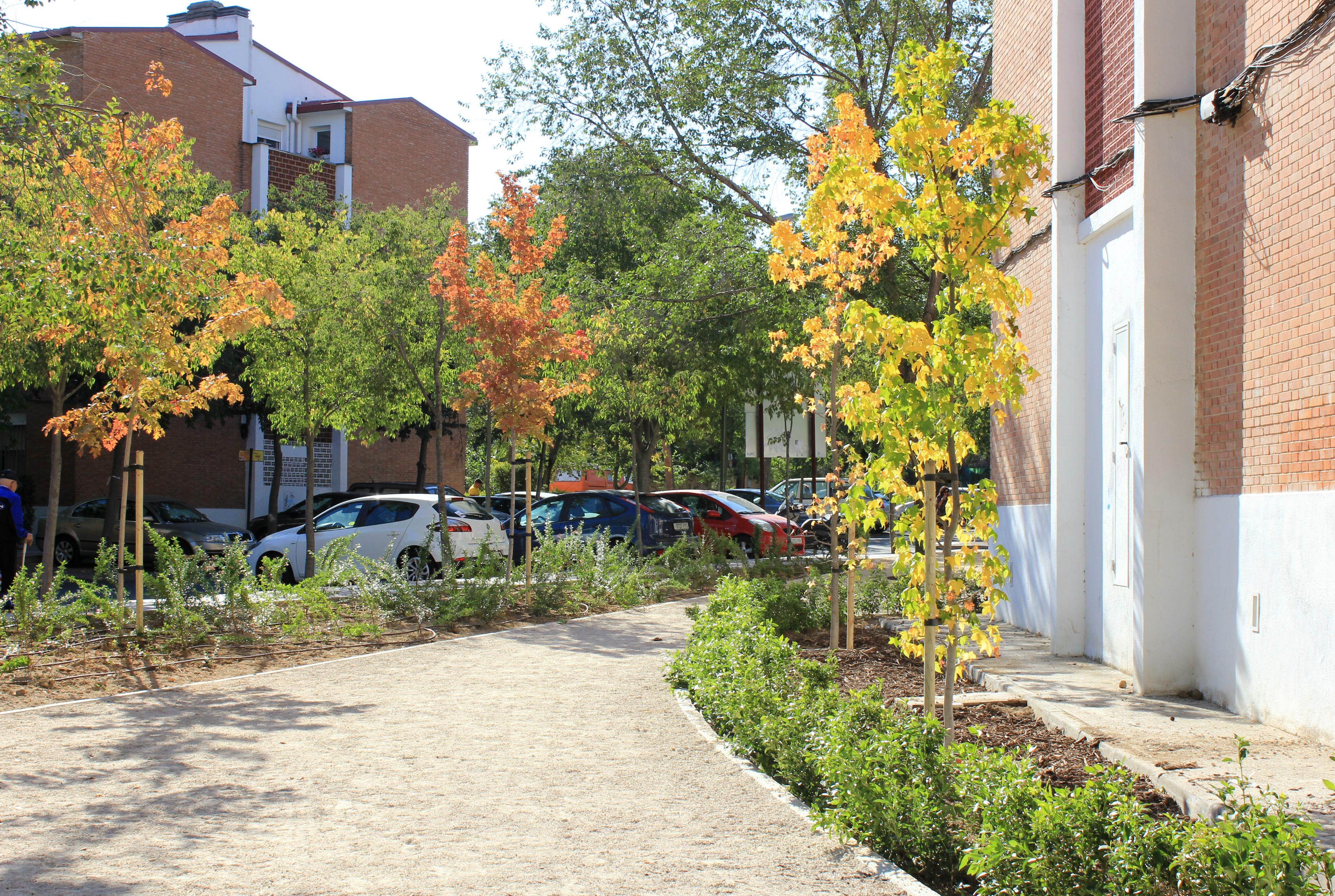 Qu estamos haciendo en las zonas verdes de ciudad pegaso - Ciudad pegaso madrid ...