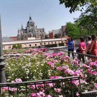 H Bitat Madrid Diario Del Ayuntamiento De Madrid