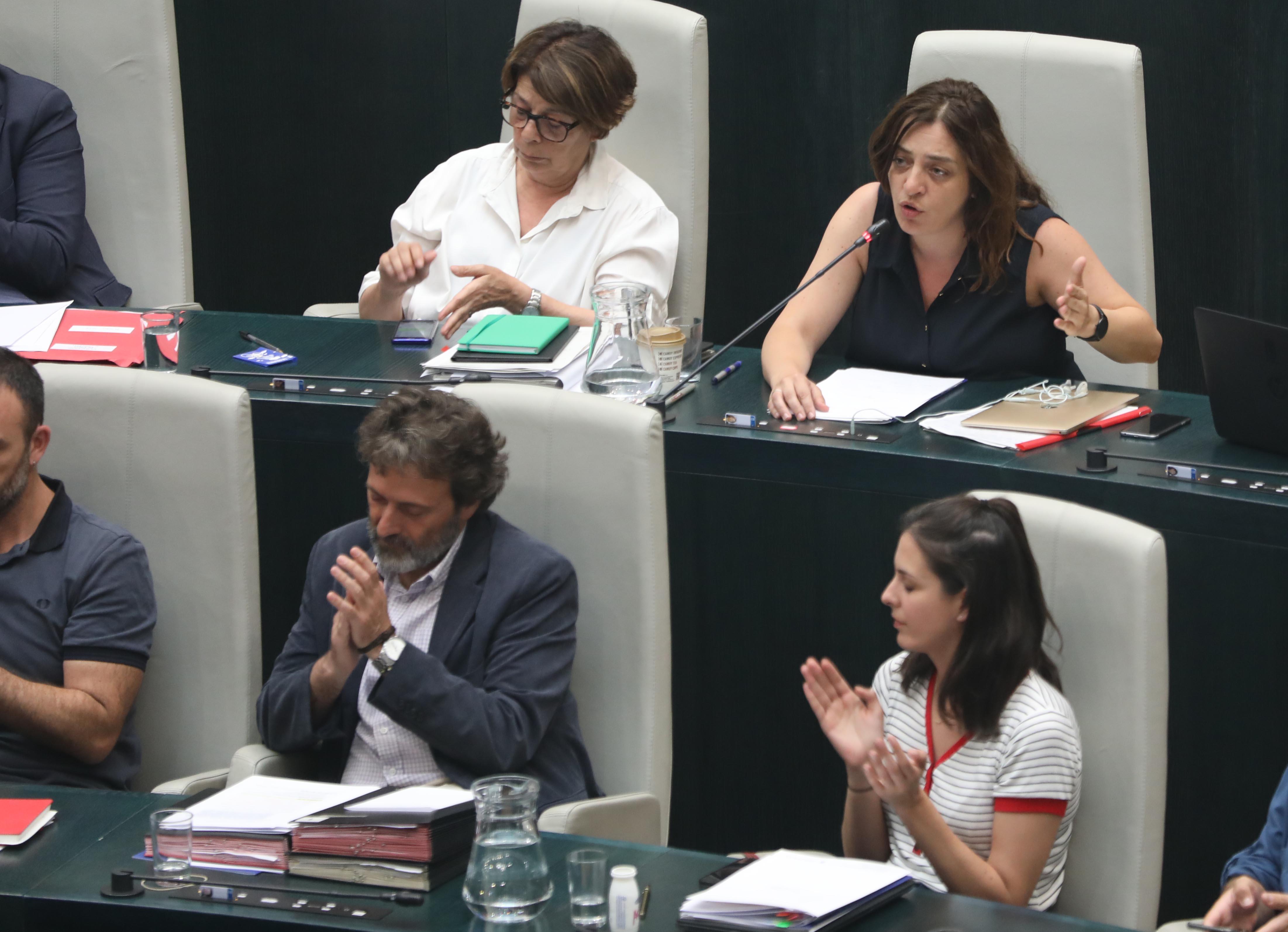 Celia Mayer, delegada de Políticas de Género y Diversidad, durante la defensa de la moción sobre las empleadas del hogar, este miércoles, en el Pleno municipal