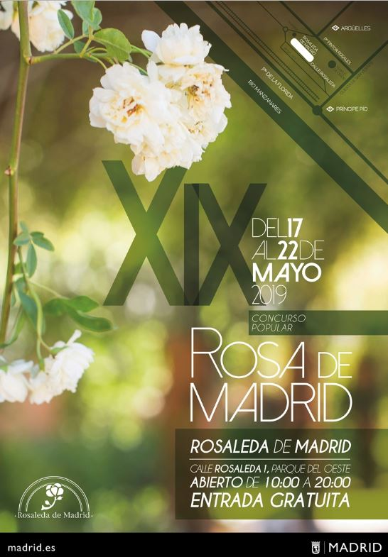 Rosa de Madrid 2019