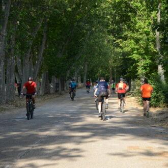A pedales por la Casa de Campo