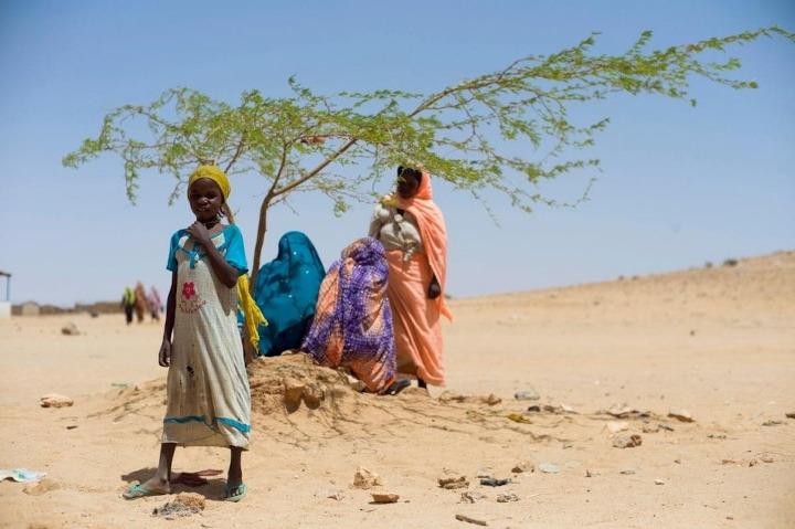 Refugiados sudaneses ACNUR
