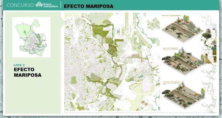 Ganadores Concurso de ideas Bosque Metropolitano