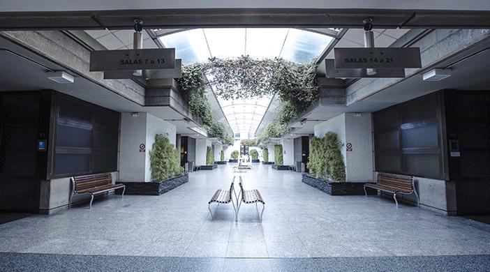 Imagen actual del patio central