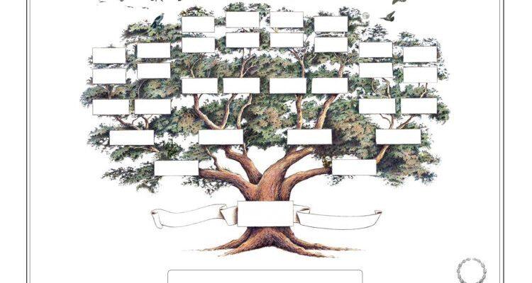 Taller sobre genealogía