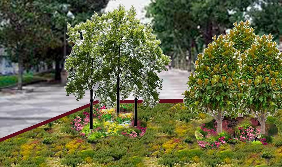 Propuesta de jardín efímero FCC