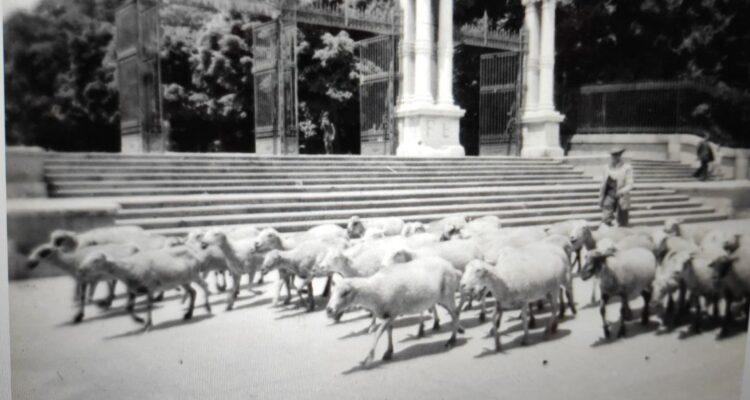 Puerta de España del Retiro 1956