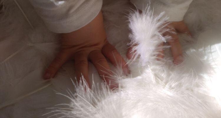 'dEspacio', la ligereza de las plumas